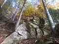 Rezerwat przyrody Pusta Wielka.jpg