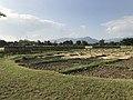 Rice drying in Yoshinogari Historical Park 1.jpg