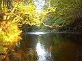 River Derwent - geograph.org.uk - 587761.jpg