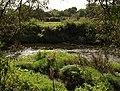 River Teign - geograph.org.uk - 992033.jpg