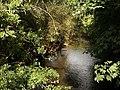 River Teign at Preston - geograph.org.uk - 993064.jpg