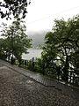 Road by the lake.jpg