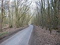 Road through Symondshyde Great Wood - geograph.org.uk - 927.jpg