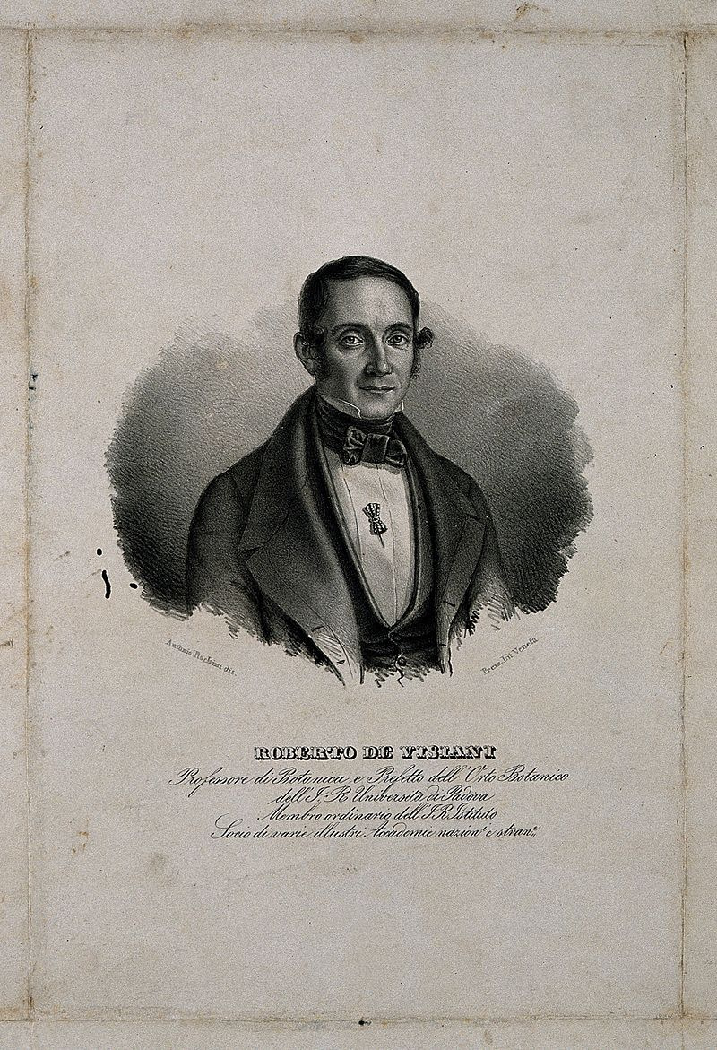 Roberto de Visiani. Lithograph by A. Rochini. Wellcome V0006076.jpg