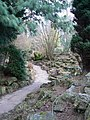 Rock Garden - geograph.org.uk - 1187137.jpg