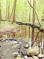 Rodenbeker Quellental 7.jpg