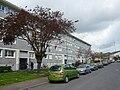 Rue de Haarlem - Monplaisir - Angers.jpg