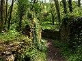 Ruin near Millcombe - geograph.org.uk - 1323687.jpg