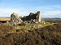 Ruin on Berry Crag - geograph.org.uk - 598219.jpg