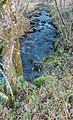 Ruisseau des Palanges (18).jpg
