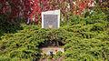 """Saalfeld Schloßstraße Gedenkstein """"Todesmarsch der Buchenwald-Häftlinge"""".jpg"""