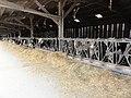 Saint-Christophe-du-Jambet (Sarthe) hameau Les Jeunoires, étable de vaches.jpg