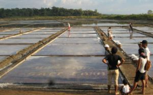 Dasol - Salt Evaporation Pond Industry
