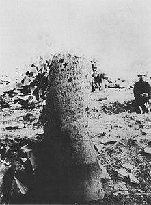 Sanchi Ashoka pillar with schism edit in 1913