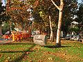 Santiago, cualquier cosa es plaza ahora (14088569073).jpg