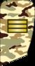 Sarbaz 1-k.png
