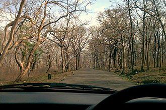 Sathyamangalam - A drive through Sathyamangalam Forest