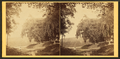 Scenery of Pennsylvania - - Catawissa Railroad - photographed by John Moran, by Moran, John, 1831-1903.png