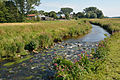 Schleswig-Holstein, Winseldorf, FFH-Gebiet Rantzau-Tal NIK 5525.JPG