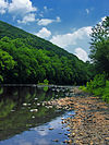 Schuylkill River Shallow.jpg