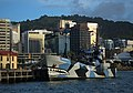 Sea Shepherd MY Bob Barker berthed in Wellington.jpg