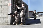 Security Force Marines conduct trilateral training during Lisa Azul 150311-M-XZ244-032.jpg