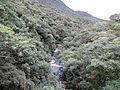 Serra do Mar - Litorina.JPG