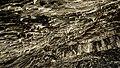 Shanidar Cave - stalactites.jpg