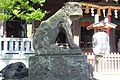 Shirahata Tenjinsha - Guardian lion-dog 2.jpg