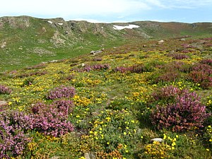Sierras de Sanabria.jpg