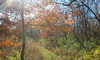 Skiles Test Nature Park - Skiles Test Nature Park in October 2014
