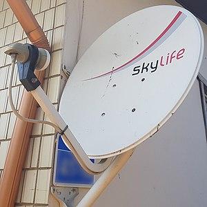 Skylife dish.jpg