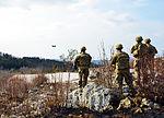 Slovenia live close air support 150312-A-DO858-004.jpg