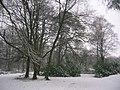 Snow at Spiers 2010.JPG