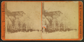 Snow scene, by Ellinwood & McClary.png