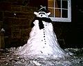Snowman - panoramio.jpg