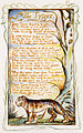 Songs of Innocence and of Experience copy Y object 42 The Tyger.jpg