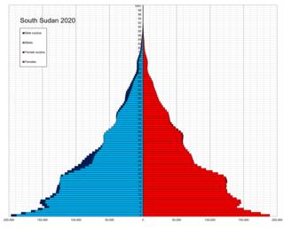 Demographics of South Sudan