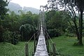Sri Lanka, Peradeniya Botanical Gardens, Bridge.jpg