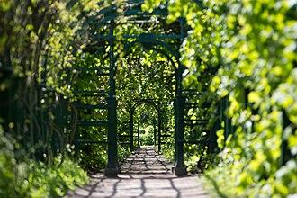 Peterhof Palace - A garden area.
