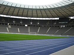 Stadionrasen von unten