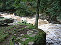 Stainforth Force - geograph.org.uk - 275639.jpg