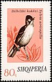 Stamp of Albania - 1974 - Colnect 301831 - Eurasian Blackcap Sylvia atricapilla.jpeg
