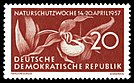 Stamps of Germany (DDR) 1957, MiNr 0563.jpg