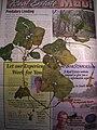 Starr-050326-5333-Coccinia grandis-voucher 050225 6-Manana-Oahu (24373475519).jpg