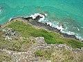 Starr-050419-0444-Lantana camara-habitat-Mokolii-Oahu (24746106745).jpg