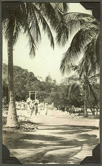 Magnetic Island - Tourists taking a walk through the palm groves on Magnetic Island, 1937-1938.