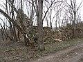 Stelmužė 32295, Lithuania - panoramio (14).jpg