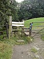 Stile by Hag Farm - geograph.org.uk - 620683.jpg