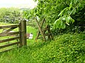 Stile next to A494 - geograph.org.uk - 449076.jpg